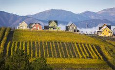 """The Lookout, a new  """"lakeside village,"""" overlooks Lake Chelan and nearby vineyards. Perfect WA spot for a family vacation rental."""