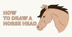 How to Draw a Horse's Head: Easy and Simple Guide