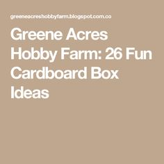 Greene Acres Hobby Farm: 26 Fun Cardboard Box Ideas