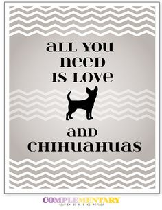 Reminds me of my little friend Nicholas' chihuahua book xoxo