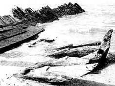 Black and white photograph of the remains of a ship on the bottom of the sea floor.