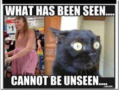 Animal Humor ... Omg I just died LOL