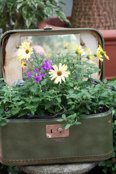 Upcycled suitcases used as planters!