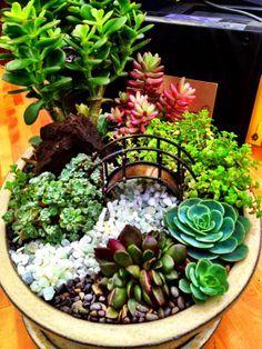 Miniature succulent garden with bridge. From the miniature garden club board