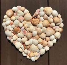Beach Themed Crafts, Beach Crafts, Seashell Art, Seashell Crafts, Rock Crafts, Arts And Crafts, Diy Crafts, Seashell Projects, Driftwood Projects