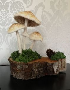 Daperling mushrooms needle felted and attached to a base. Wet Felting, Needle Felting, Felt Mushroom, Felt Bunny, Felt Fairy, Wool Embroidery, Funky Art, Felt Decorations, Driftwood Art
