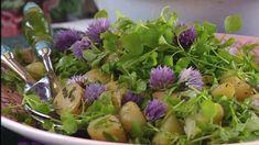 Nurmikolla ja kukkapenkeissä kasvaa paljon maukkaita rikkaruohoja. Strömsön kesäinen perunasalaatti maustetaan nuorilla siankärsämön lehdillä. Cabbage, Salads, Vegetables, Food, Vegetable Garden, Essen, Cabbages, Vegetable Recipes, Meals