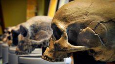 Quanto siamo parenti dei Neanderthal? http://www.sapereweb.it/quanto-siamo-parenti-dei-neanderthal/         Non erano i nostri nonni: più probabilmente, si trattava solo di cugini. A scoprire illegame (o, quantomeno, il più probabile) tra Homo sapiens e Homo neanderthalensis fu, 17 anni fa, un'équipe di scienziati tedeschi, coordinati da Michael Krings, che...
