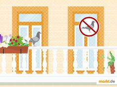 ️ Tauben vom Balkon vertreiben - Tipps & Tricks | markt.de #tipps #garten #balkon #tauben #taubenschreck