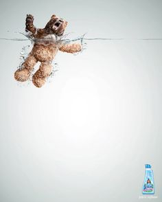 Lenor Fabric Softener - Publicity Campaign by Grey Group Peru Creative Advertising. A campaign by Grey Group Peru for Lenor fabric softener. If the wild animals come in touch with the softener, they become soft Creative Advertising, Print Advertising, Print Ads, Marketing And Advertising, Advertising Campaign, Funny Advertising, Advertising Ideas, Guerilla Marketing, Street Marketing
