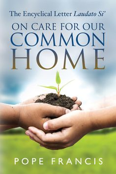 On care for our common home : Laudato si' : encyclical letter / Francis