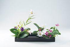 Ohara School of Ikebana Rimpa Arrangement with Japanese lily, clematis, hosta