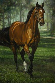 Horse painting by Jaime Corum. Pretty Horses, Horse Love, Beautiful Horses, Animals Beautiful, Painted Horses, Horse Drawings, Animal Drawings, Pencil Drawings, Art Drawings