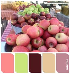 Farmers market color scheme - with green apple walls Paint Schemes, Colour Schemes, Color Combinations, Bathroom Colors, Kitchen Colors, Diy Art Projects, Colour Board, Little Girl Rooms, Color Stories