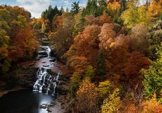 Falls of Clyde waterfall in autumn colours, New Lanark, Lanarkshire, Scotland Photography Workshops, Image Photography, Landscape Photography, Scotland Landscape, Any Images, Waterfall, Scenery, Autumn Colours, River