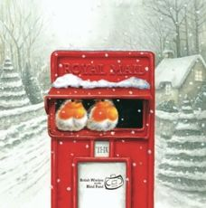 Send season greetings and help out a charity by buying one of these great charity Christmas cards. Charity Christmas Cards, Robins, Little Gifts, Blind, Merry Christmas, British, Top, Merry Little Christmas, Robin