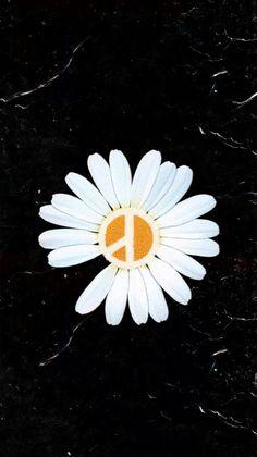 Daisy Wallpaper, Sad Wallpaper, Retro Wallpaper, Aesthetic Iphone Wallpaper, Galaxy Wallpaper, Lock Screen Wallpaper, Love Flowers, Spring Flowers, White Flowers