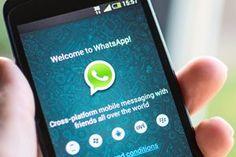 Imagem de WhatsApp para web: veja como compartilhar sua agenda de contatos com amigos no tecmundo