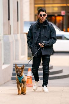 We just want to say happy Father's Day to all the dog dads out there. We want to honor the guys who take good care of the pups they love all year long. Every dog dad deserves to be treated like a celebrity for a day. #dogtime #fathersday #celebritydog #NickJonas Marion Cotillard, Hottest Male Celebrities, Cute Celebrities, Celebs, New Star Trek, Star Wars, Jonas Brothers, Leonardo Dicaprio, Nyc