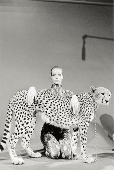 By Franco Rubartelli, Veruschka, 1964