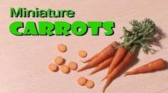 Miniature carrots - SugarCharmShop YouTube Tutorial