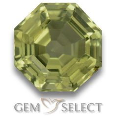 GemSelect features this natural untreated Apatite from Madagascar. This Green Apatite weighs 3.4ct and measures 9.4 x 8.9mm in size. More Asscher Cut Apatite is available on gemselect.com #birthstones #healing #jewelrystone #loosegemstones #buygems #gemstonelover #naturalgemstone #coloredgemstones #gemstones #gem #gems #gemselect #sale #shopping #gemshopping #naturalapatite #apatite #greenapatite #octagongem #octagongems #greengem #green