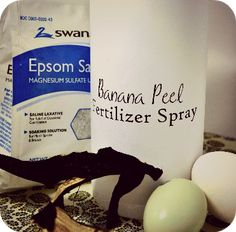 How to keep your garden and indoor plants happy and healthy with Banana Peel Fertilizer Spray!