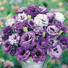 Lisianthus 'Blue Lagoon'... - Pixdaus. Well, this is gorgeous. Beautiful, simply beautiful arrangement and good container. Nicely done.