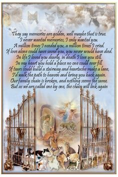 rainbow bridge poem for dogs That go to Heaven Family Dogs That have gone over the Bridge♌ Dog Quotes, Animal Quotes, Hurt Quotes, I Love Dogs, Puppy Love, Rainbow Bridge Poem, Pet Poems, Pet Loss Grief, Dog Grief