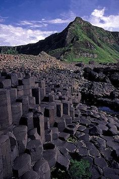 At the Giants Causeway in Ireland.