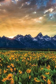The 25 Most Photogenic (and Breathtaking) Spots in America via @PureWow