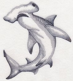Machine Embroidery Designs at Embroidery Library! Hammerhead Shark Tattoo, Shark Tattoos, Head Tattoos, Manta Ray Tattoos, Animal Sketches, Animal Drawings, Art Drawings, Shark Illustration, Shark Drawing