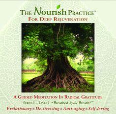The Nourish Practice for Deep Rejuvenation