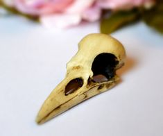 Raven Skull replica with customizable by GothChicAccessories, $19.50