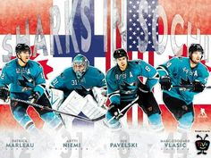 Sharks at the 2014 Olympics