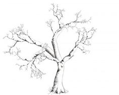 Nice idea for a tree tattoo. Lots of open space for extras like birds or whatever