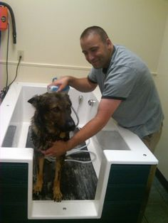 Business matters self serve dog wash reaches robbinsdale self serve dog wash newbreedtubs solutioingenieria Images