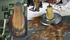 Leaving all her long lovely luscious luxuriant locks on the barbershop floor:))) Long Hair Cut Short, Short Hair Styles, Balding Long Hair, Barber Shop Haircuts, Forced Haircut, Bouffant Hair, Long Ponytails, Hair Falling Out, Super Long Hair