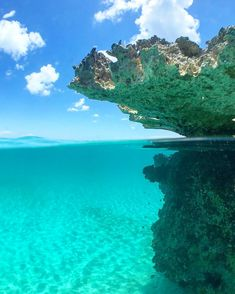 Snorkel those blue waters! Shoal Bay Scuba are the guys to show you the very best and most active reefs.