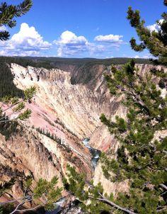 Yellowstone National Park, Wyoming, The Canyon Photo Melissa Greenwell