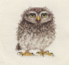 Baby TAWNY OWL, OWLET ~ Bird, Complete counted cross stitch kit * Exclusive