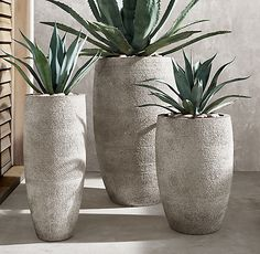 Garten Vetro Planter Vacuums Commercial or Domestic? House Plants Decor, Plant Decor, Outdoor Pots, Outdoor Gardens, Large Outdoor Planters, Fall Planters, Large Indoor Plants, Modern Planters, Garden Spaces