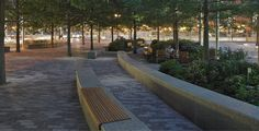 Contrasting Shade: Building a Sustainable Urban Grove Central Warf Plaza