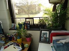 This is something that I think is important to have in a classroom- life! I want plants and big windows to provide a relaxing feeling in the classroom