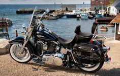 Image from http://www.harley-davidson.com/en_US/Media/images/2011-Motorcycles/photo_gallery/pg_soflstc_dom_gma.jpg.