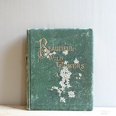 1880s Beautiful Wild Flowers Book D Lothorp by lovintagefinds