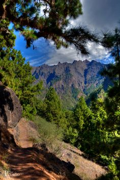 La Palma - Isla Verde, Nationalpark Caldera de Taburiente   Sta,  Cruz de Tenerife  Spain