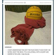 Shingeki no kyojin meme tumblr mikasa volleyball scarf