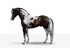 Sims 3, Sims 4 Pets, Horse Games, Cowboy Gear, Sims Games, Horse Stuff, Tack, Equestrian, Charlotte
