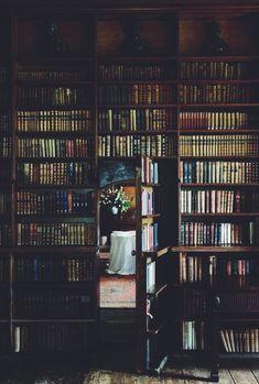#library #wooden #beams #hidden #door #books #reading